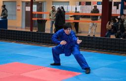 kungfu7 (100)