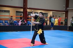 kungfu7 (186)