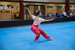 kungfu (90)